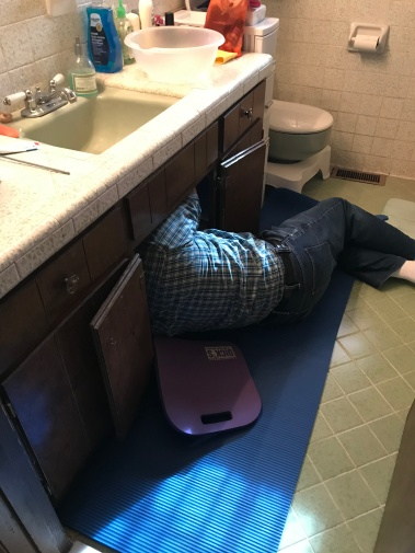 Papaw under the sink